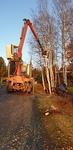 Markku Sääskilahti on ottanut puutavara-auton kouralla rungosta kiinni.