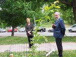Juhlaseremonian hoitivat alueen puheenjohtaja Jorma Nisula ja presidentti Tarja Halonen