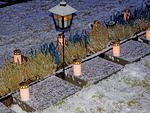 LC Hiekkaharju-Sandkulla vei aamulla kynttilät kaikille sankarihaudoille.